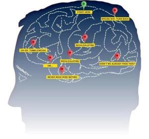 GPS and Brain