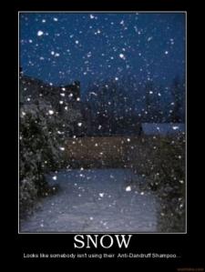 snow-snow-dandruff-shampoo-demotivational-poster