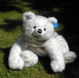 Grandma Fresca teddy bear