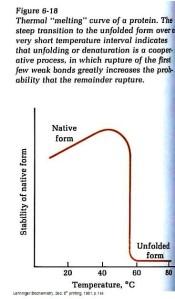 protein denaturing
