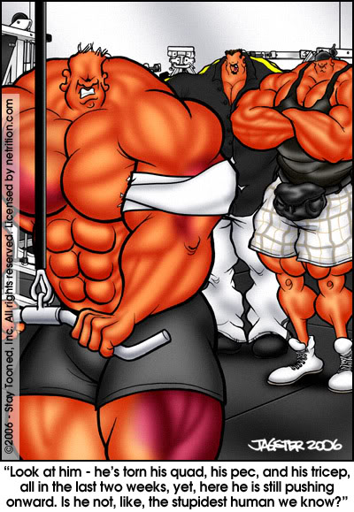 Gay muscle blog