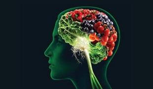brainfood1