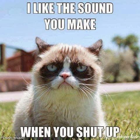 I-like-the-sound-you-make-when-you-shut-up