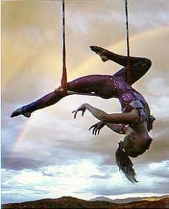 static trapeze