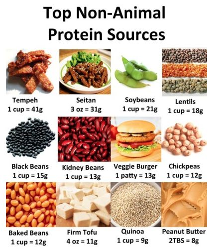 Natural Protein Foods Veg